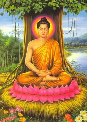 Lịch sử Đức Phật bằng tranh (12 hình)