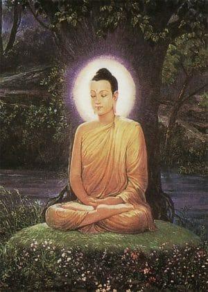 Life of the Buddha (Tiếng Việt)