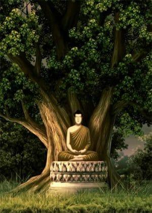 Lịch sử Đức Phật bằng tranh (30 hình) – Thái Lan